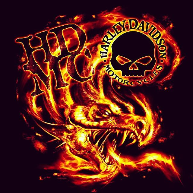 Some Sweet Dragon Fire Harley Action From The Past Did A Series Of These A Few Years Ago I Ll Dig Them Up Harleyart Hdmc Bik Harley Davidson Art
