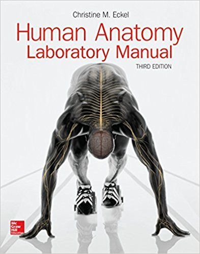 anatomy and physiology an integrative approach 2nd edition lab manual