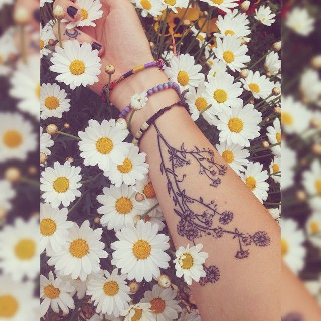 crazy daisies  #me #daisies #tattoos #plants #flowers #flowertattoo #daisytattoo…