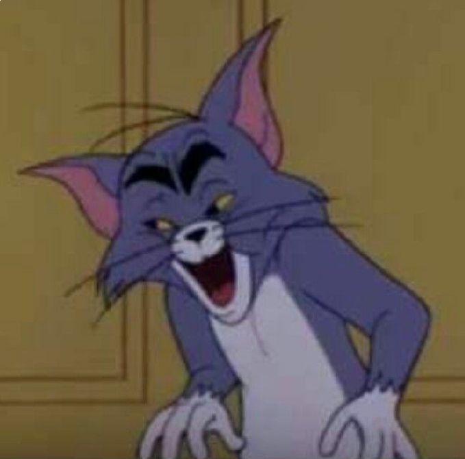 Sanjana V Singh Tom Pinterest Memes Jerry Memes And Dankest Memes