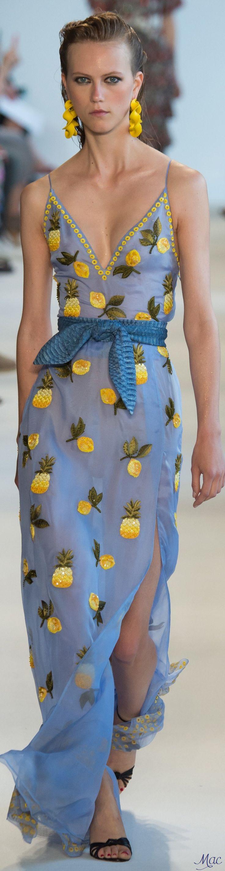 Spring 2017 Ready-to-Wear Altuzarra