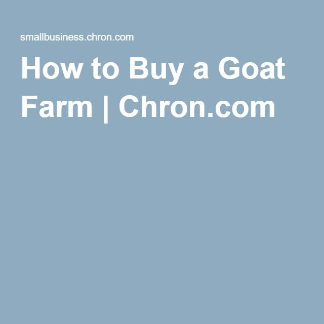 How to Buy a Goat Farm | Chron.com