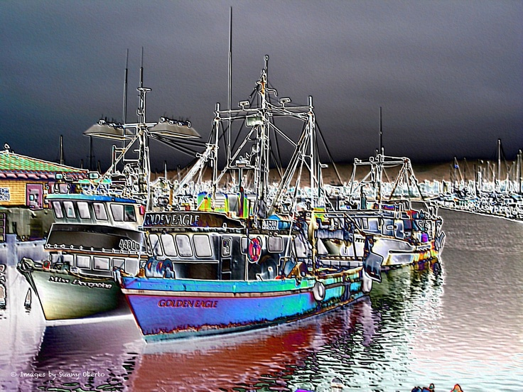 48 best images about ventura ca images by sunny oberto for Ventura sport fishing