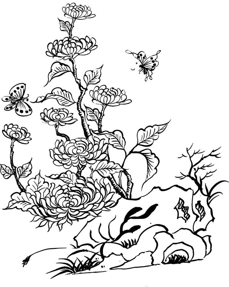 chrysanthemum flowers coloring page