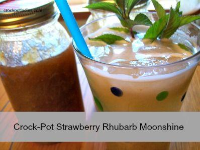 Strawberry-Rhubarb Slush Recipe — Dishmaps