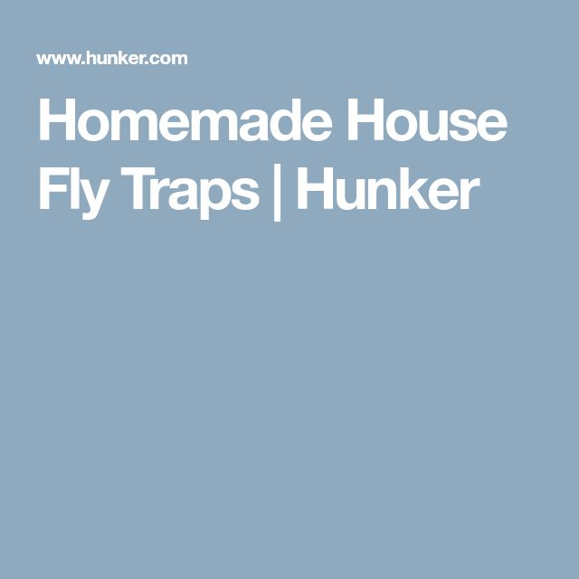 Homemade House Fly Traps | Hunker