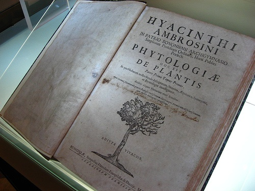 Gabinete de Curiosidades: Officina Profumo Farmaceutica di Santa Maria Novella
