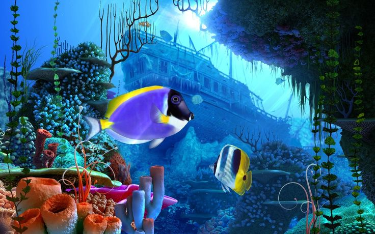 Free full version 3d screensavers download coral reef 3d - 3d animation wallpaper download ...