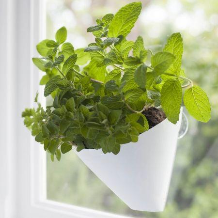 Hanging gardens planter