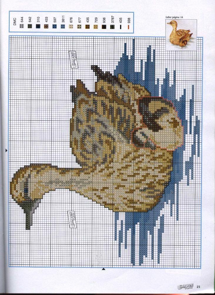 336550-40c17-66988112--ucc05d.jpg (JPEG Image, 731 × 1000 pixels) - Scaled (54%)