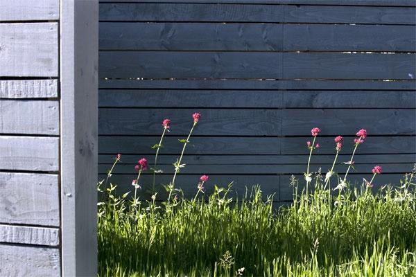 Marcus Green - future gardens