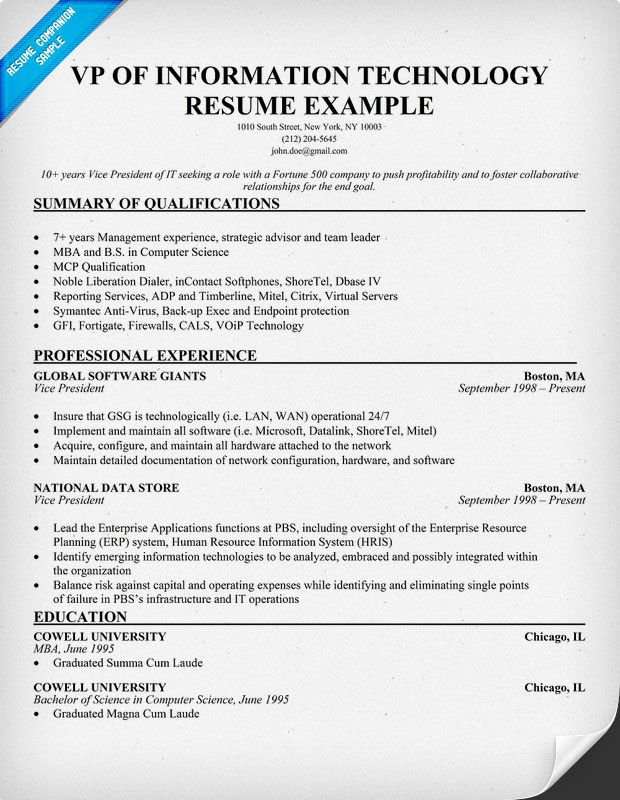 vp of information technology resume exle http