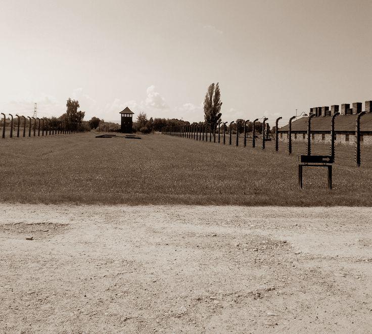 Auschwitz, b/n