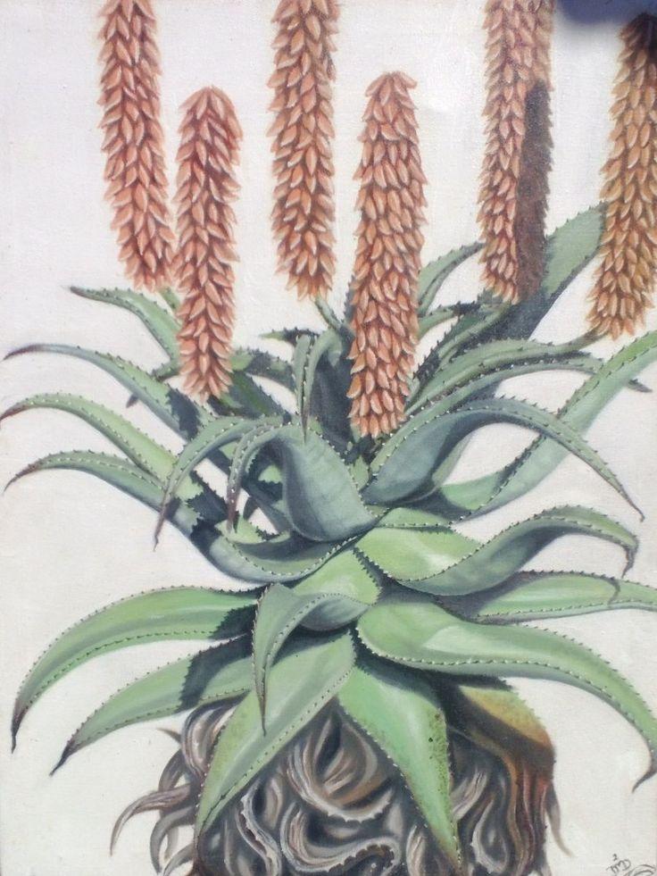 Orange Aloe ~ Block Mounted with Wooden Frame; Oil Painting by Dawn Du Preez #DawnDuPreez
