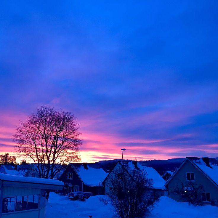 外さっむーい久しぶりにマイナス20度超えました今冬は大雪でそんなに寒くなかったのにやっと雪が落ち着いたと思ったら昨日今日とで急に気温下がりましたでも天気は良くて朝方や夕焼けの空の色が本当に綺麗 の写真は朝9時に撮ったもの空気が澄んでるのでしっかり着込んで外に出るとシャキッとするなんか今年は春が来るの早いかも  & ミリアムがクリスマスプレゼントに一番欲しがっていたハッチマル(日本ではウーモ)をやっと昨日開けました(ネモはまだレゴ2箱未開封) これテレビのCMで見たくらいでイマイチ何かわかってなかったけどなんか進化したたまごっちみたいタマゴをコツコツとノックしたりさすって温めると羽化したんです(笑)ほんとびっくりした中身は双子だったようで優しいミリアムはネモに片方あげて一緒に遊んでました子供達は物凄く楽しそうに一生懸命世話してるけどいつまで続くかなー(笑)ずっと音が鳴ってるから寝る時にスイッチ切ることが出来て良かった.....  12月は特に出費が多かったけど年末年始のセールで更に買い物して流石にちょっと反省…