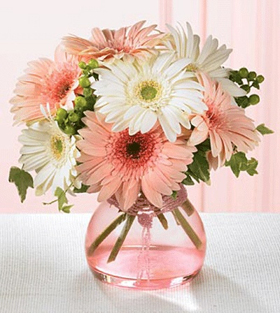 Daisy arrangement - in mason jars, this would be perfect!