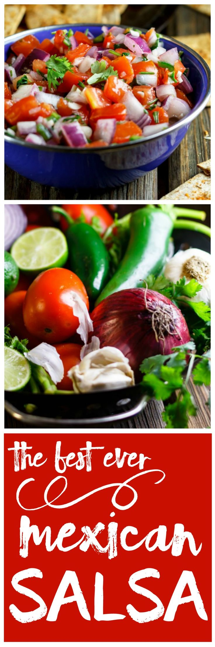 Gin's Authentic Mexican Salsa Recipe- the ONLY salsa recipe you need. Love love love!
