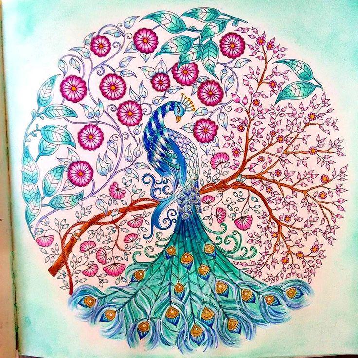 Meu Pavao Livro De Colorir Jardim Secreto Pintado Por Jessicasantin Johanna Basford Secret Garden Peacock