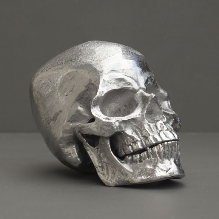 Silver skull skeleton thats life like with real looking bones, this is a cool halloween gift for some one special who loves skulls from our Uk store