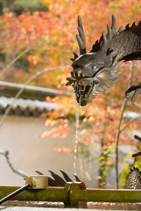 The Autumn Dragon - Mihara, Japan