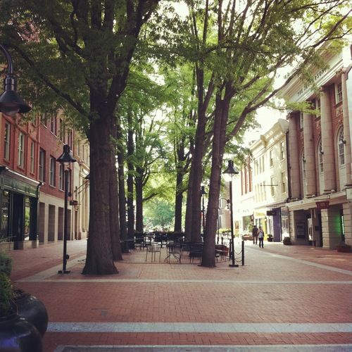 21 Best Charlottesville Hiking Images On Pinterest