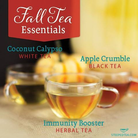 These are some of our top favorite fall teas. Why? Immunity Booster: With the kids back to school, keep your immune system strong and healthy Apple Crumble: Curl up with a warm cuppa on a cool fall afternoon Coconut Calypso: For when you wish you were on vacation  What is your favorite fall tea? Comment below!