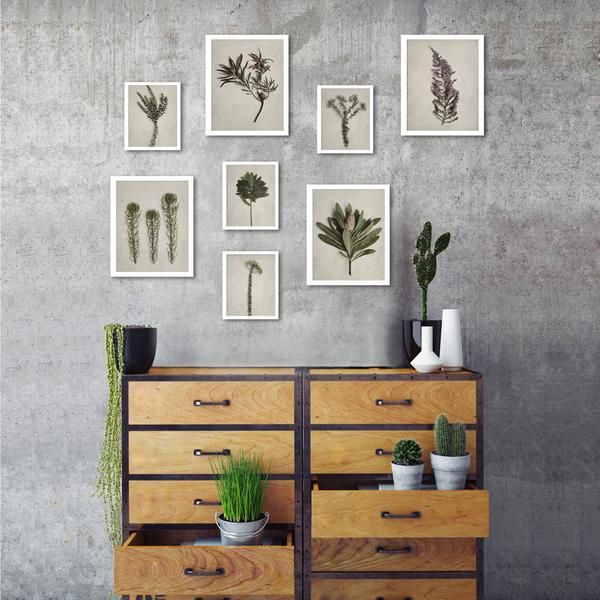 Small Fynbos Gallery wall - 8 prints, various sizes (Monochrome)