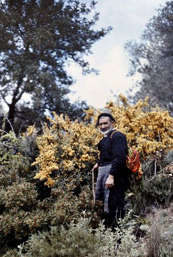 A muleteer stands in the woods in Crete; 1920's; Images by Maynard Owen Williams / Wilhelm Tobien;  Source: National Geographic Stock