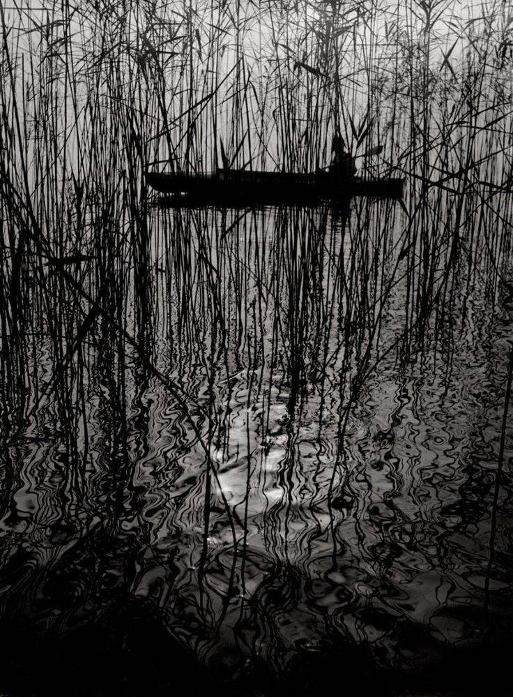 mondonoir:    Ruth Hallensleben, Paddler in a boat on Lake Constance, 1950+  Vintage ferrotyped gelatin silver print on agfa paper