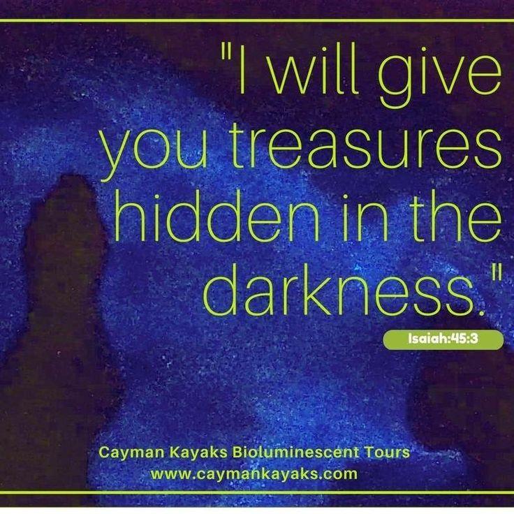 Cayman Kayaks Bioluminescence Tour