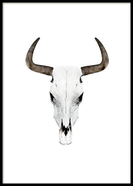 Buffalo horns - 50x70Feather - 50x70...