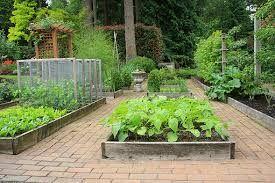 pěkná zeleninová zahrada - Hledat Googlem