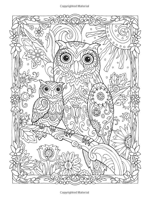 Creative Haven Owls Coloring Book Marjorie Sarnat See My Zentangle Board For More Pins