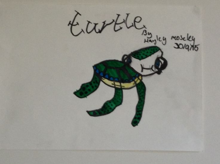 A turtle if your look in drawings and paintings Hayley Moseley there should be a turtle like this one