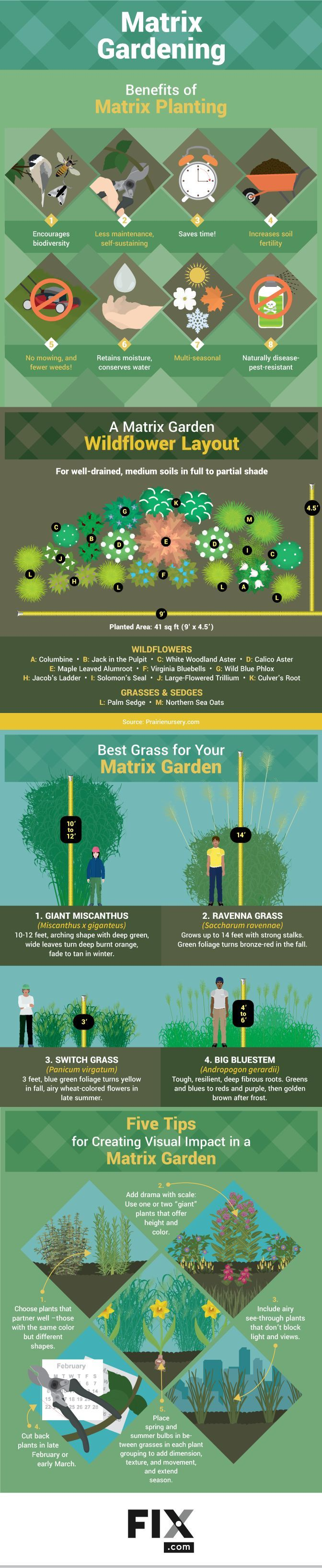 Check out Self-Sustaining Garden: Beginners Guide to Matrix Gardening [Infographic] at https://homesteading.com/beginners-guide-matrix-gardening/