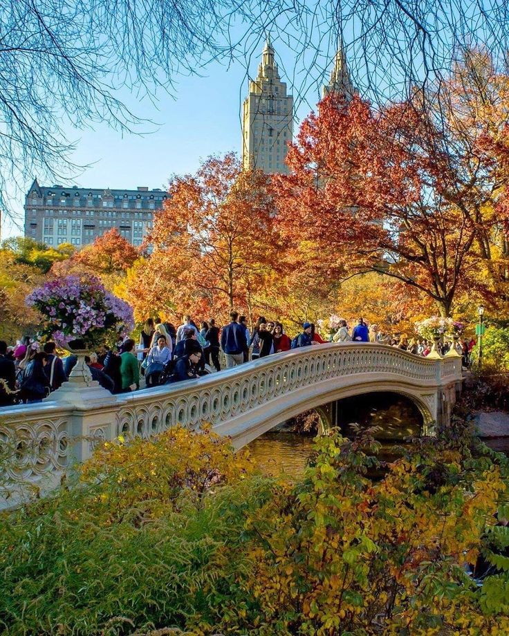 Autumn in Central Park  by @kellyrkopp by newyorkcityfeelings.com - The Best Photos and Videos of New York City including the Statue of Liberty Brooklyn Bridge Central Park Empire State Building Chrysler Building and other popular New York places and attractions.