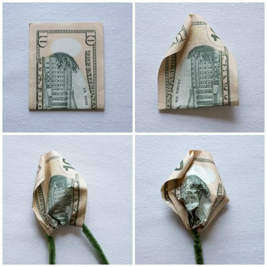 Money Rose - Atop Serenity Hill