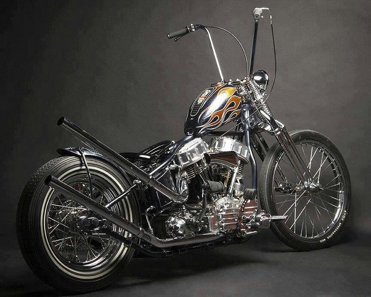 sweet Harley. http://pinterest.com/quinnproperties/ http://www.tumblr.com/blog/patrickquinnproperties