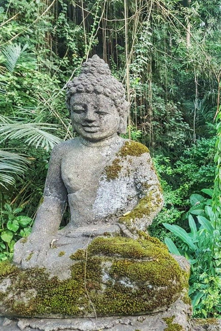 Pin this! Things To Do In Ubud