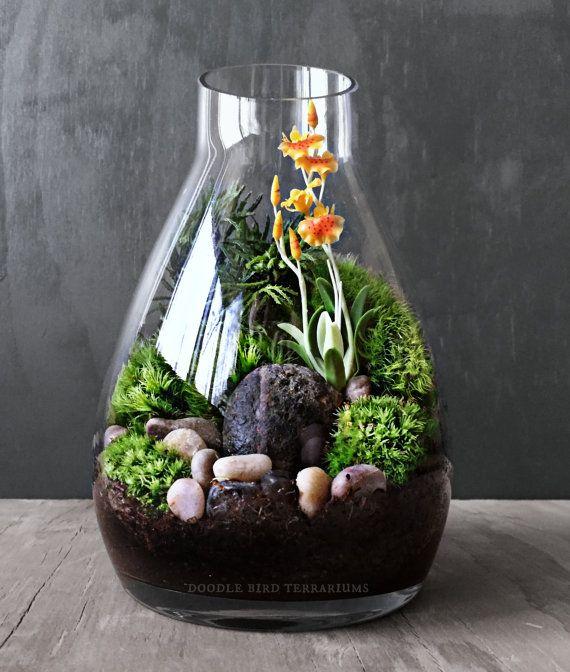 Best 25 moss decor ideas on pinterest - Terrarium decoration miniature ...