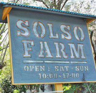 「SOLSO FARM」にいってきました。