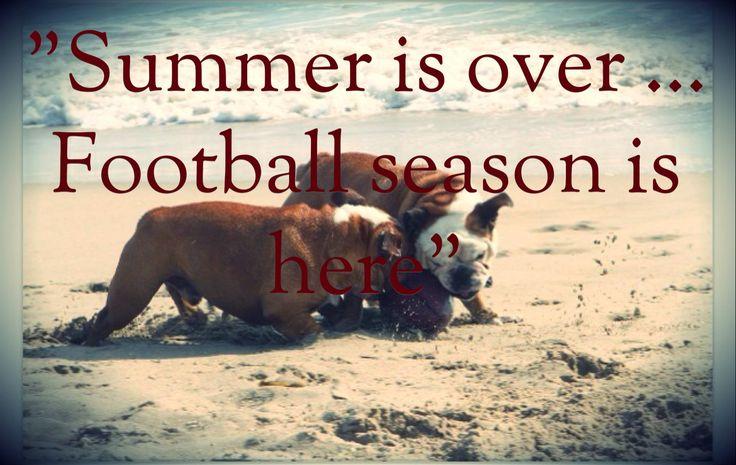 283 Best Seasonal Humor/Holiday Greetings Images On