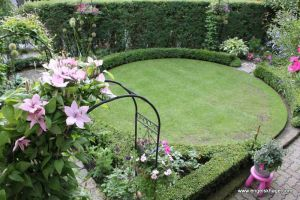 Clematis & hedging | Engelskhage, a small English garden in Norway