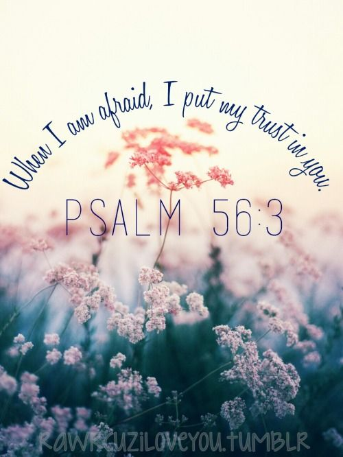rawrcuziloveyou: When I am afraid, I put my trust in you. —Psalm 56:3