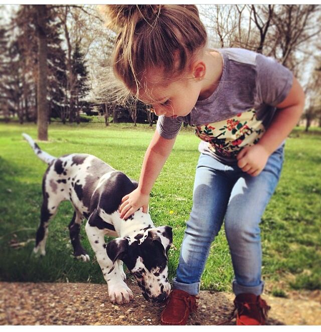 (Open rp with Chelsea, she's the music teacher) *it was her break time so she was at the park watching Aubree play and sees her pet a dog and thinks* *she soon hears footsteps coming over toward her and she sees you*- Chelsea
