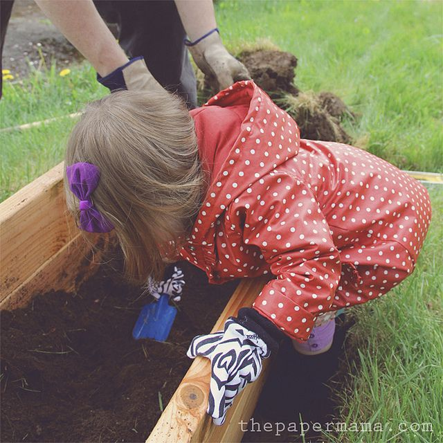 Raised garden bed for the kiddo! A simple DIY for you. Garden box instructions are here: http://www.bhg.com/blogs/better-homes-and-gardens-style-blog/2012/06/14/diy-ify-raised-garden-bed-for-the-kids/: Gardens Boxes, Plants Bulbs, For Kids, Raised Gardens Beds, Kids Gardens, Paper Mama, 14 Gardens, Raised Garden Beds, Garden Boxes