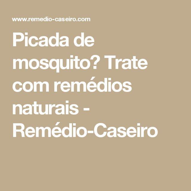 Picada de mosquito? Trate com remédios naturais - Remédio-Caseiro