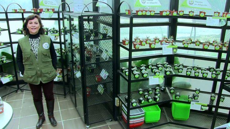 Adopta una planta | Jardin botánico UNAM