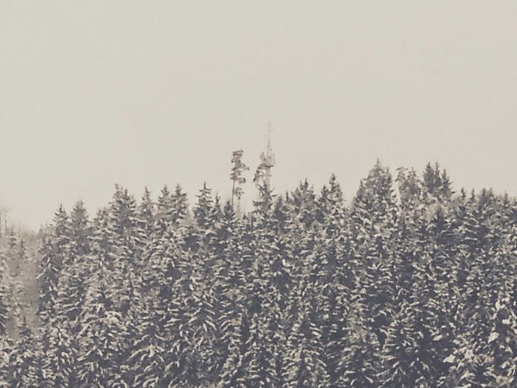 it´s snowing here