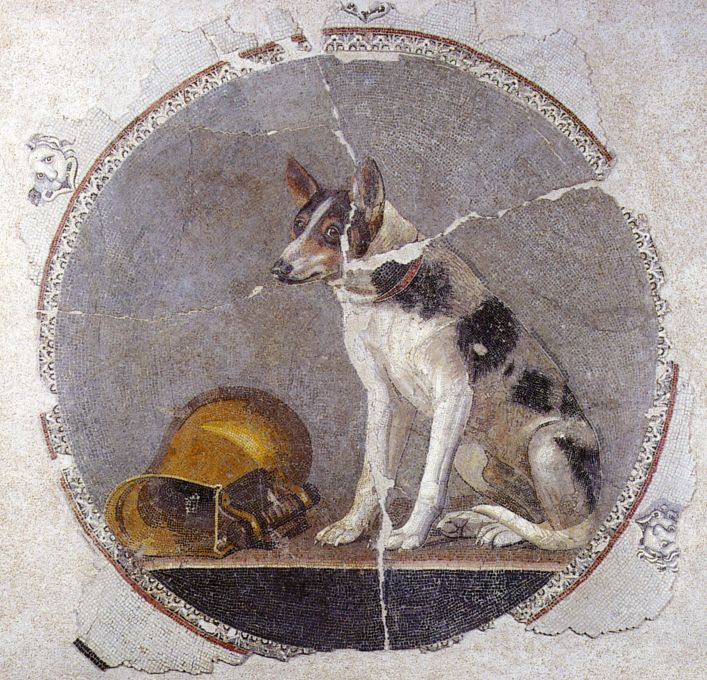 Mosaic floor depicting a dog and a knocked-over gold vessel. Alexandria.  approx. 200-100 BC. This scene formed the center piece of a large mosaic floor.  The quality is fantastic, and this period represents a high point in the mosaic craft in antiquity. Many of the tesserae (the little pieces of stone/glass that make up the floor) are only 1-2mm across, which allows the mosaicist to achieve a painting-like effect.  This technique was known in antiquity as opus vermiculatum, or 'wormy work'.